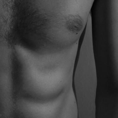 sistema-muscolare